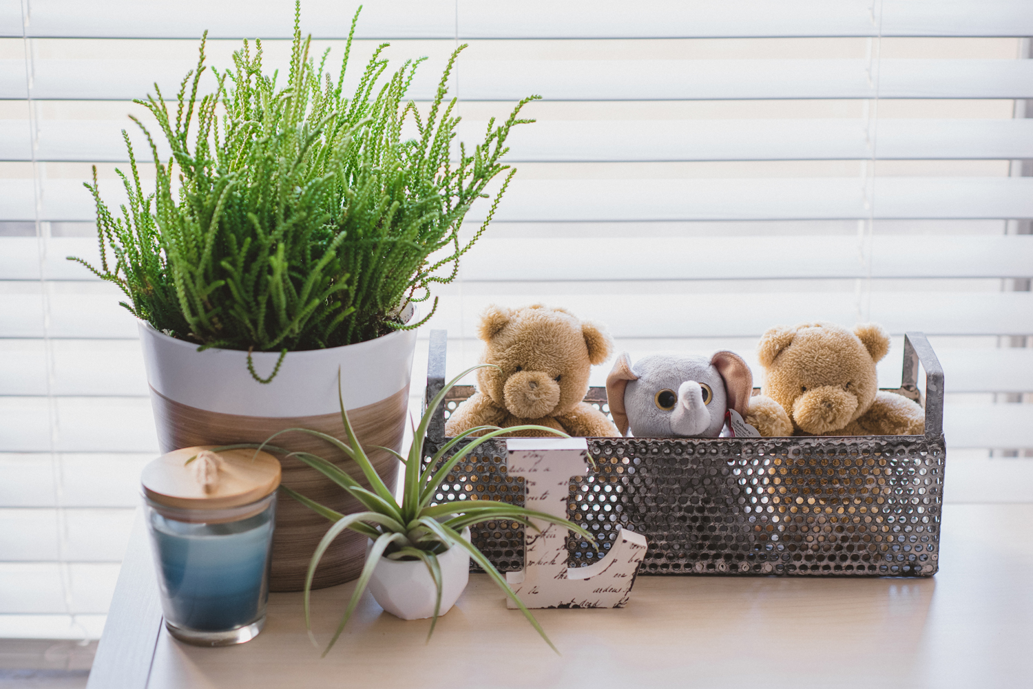 Top of bookcase in baby room decor: letter L, succulents, and stuffed animals, modern woodland theme nursery
