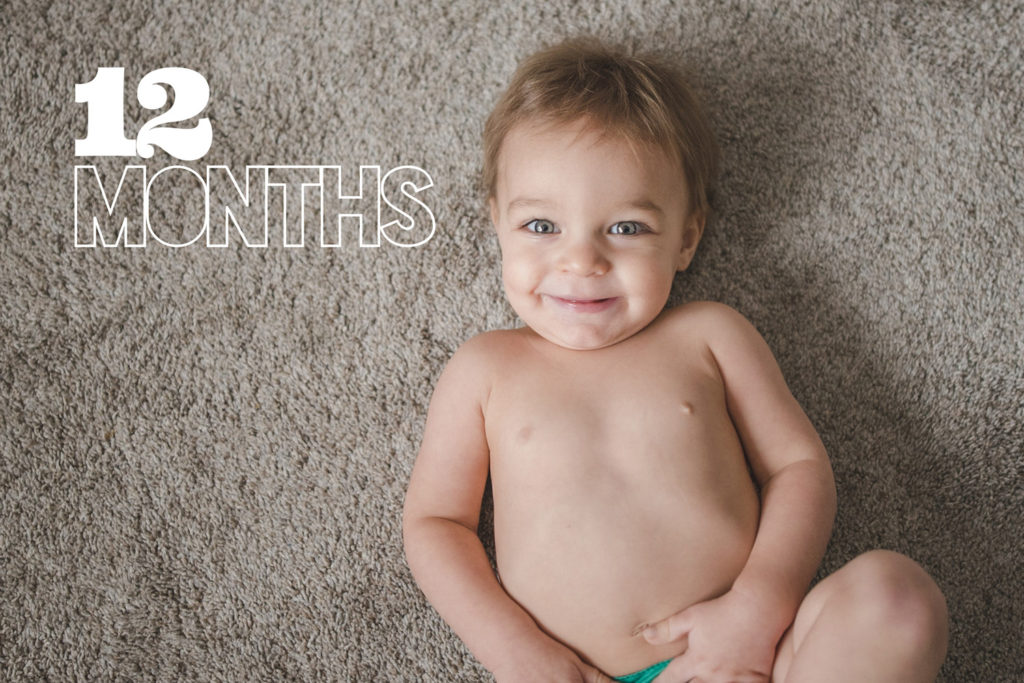 Lincoln at 12 Months | Digital Baby Book