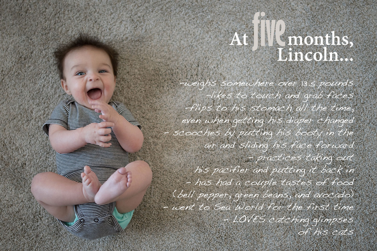 Baby Book image with text overlay, 5 month baby