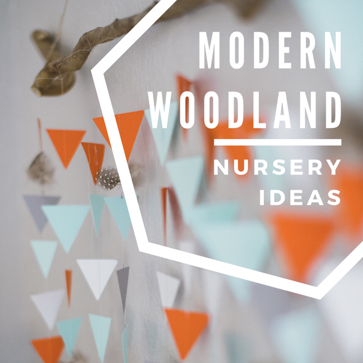 Lincoln's Modern Woodland Nursery